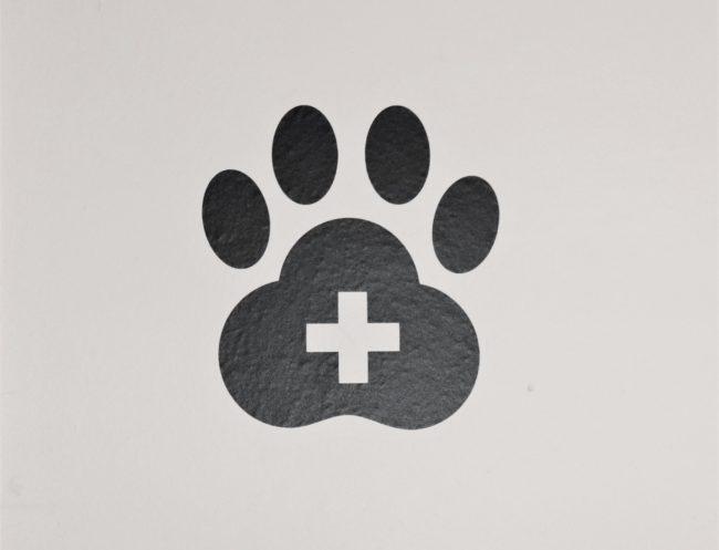 Tierpfote mit Kreuz zeigt den Eingang zur der neunerhaus Tierarztpraxis
